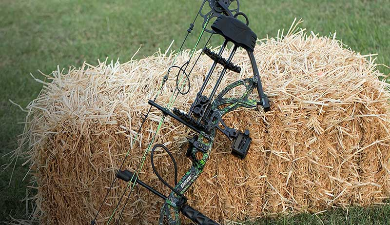 Best Used Compound Bow