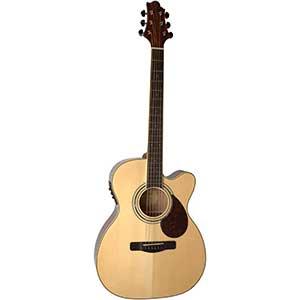 Samick Natural OM Guitar | Gold Tuner | Spruce Top