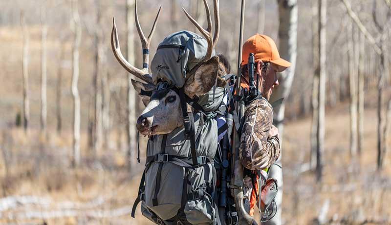 Pack Frames for Hunting