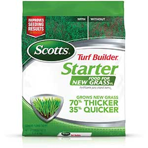 Best Starter Fertilizer for Overseeding – Recommendations for 2021 1