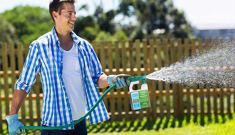 Starter Fertilizer for Overseeding
